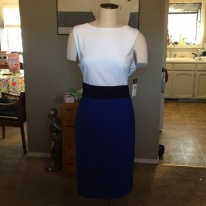 Ralph Lauren Blue & White Career Wear Dress